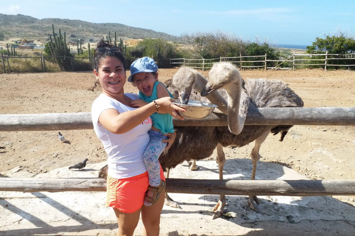 Ostrich Farm Aruba
